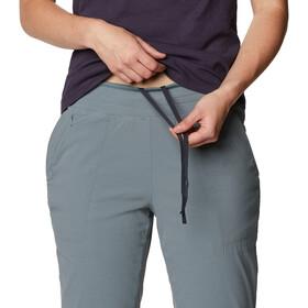 Mountain Hardwear Dynama Lined Pantalon Femme, light storm